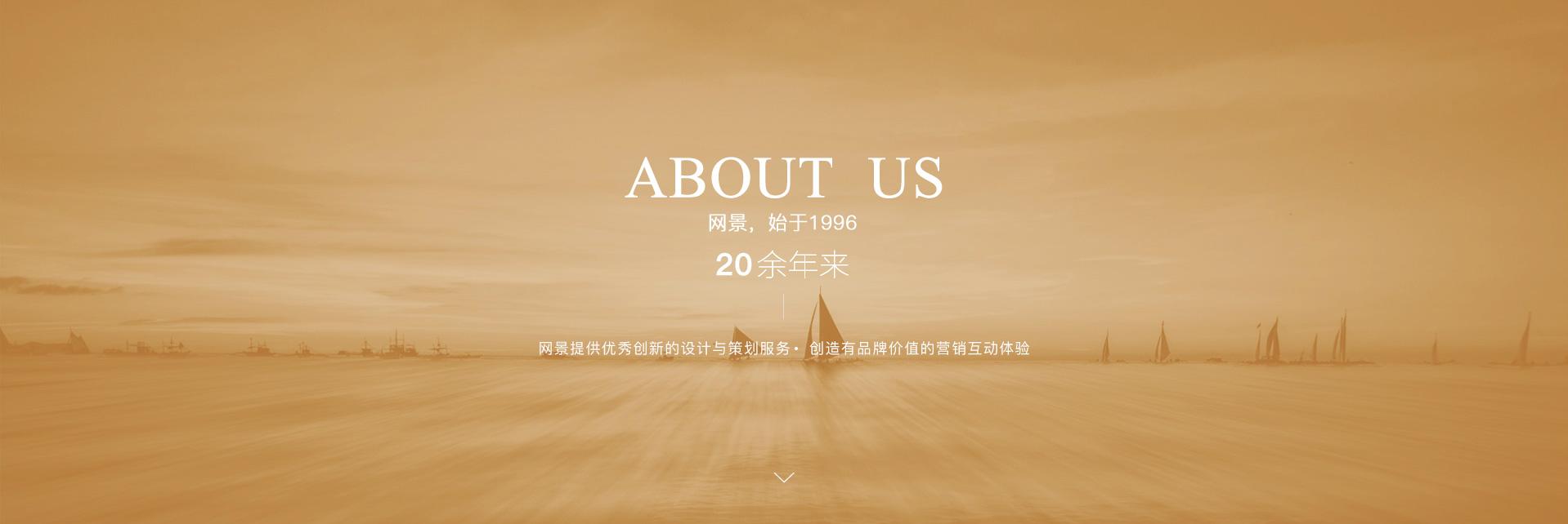 东方网景网站建设_天津站